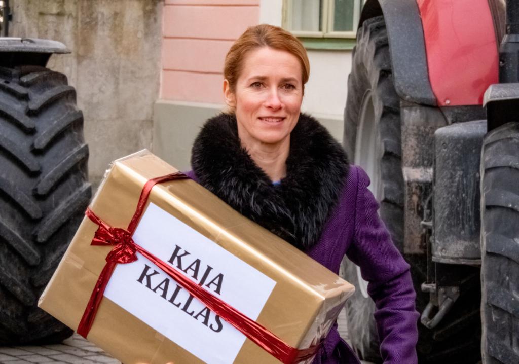 Кая Каллас, майбутня прем'єрка Естонії